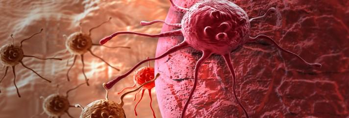 Kreftcelle