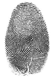 fingeravtrykk